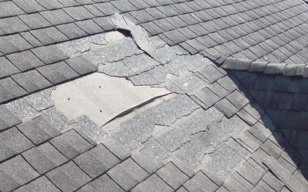 Roofing Review