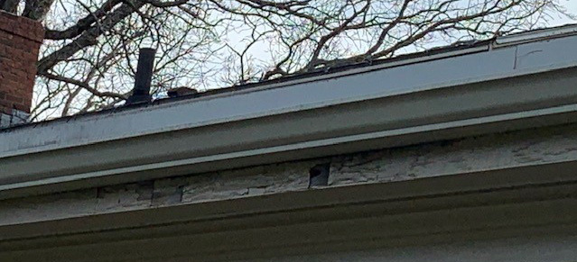 Spring Home Inspection